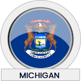 Michigan state flag icon