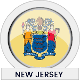 New Jersey state flag icon