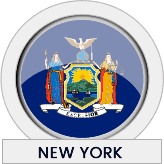New York state flag icon