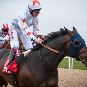 Gronk horse - http://www.sportsbetting.legal