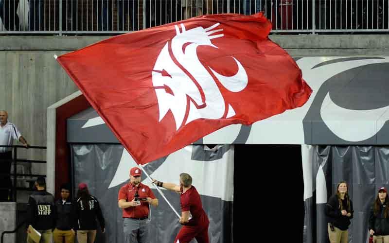 WSU Gameday flag
