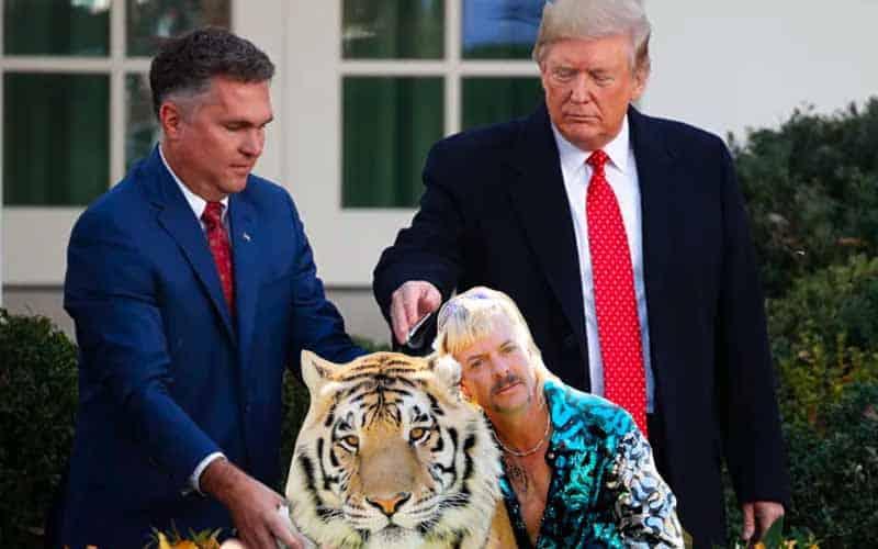 President Trump pardon Tiger King