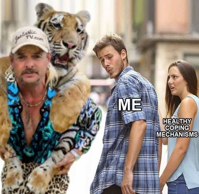 Tiger King Meme