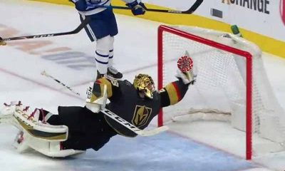 An NHL goalie making a save but the puck is a coronavirus molecule