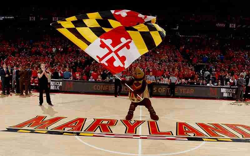 Maryland Terrapins mascot waving a flag on their basketball court