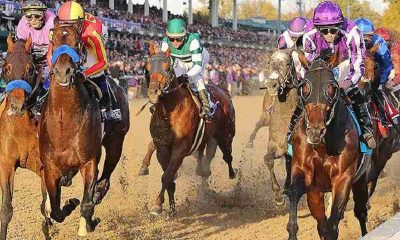 horses racing at the breeders cup classic