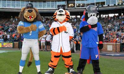 mascots for Detroit Lions Detroit Tigers and Detroit Pistons