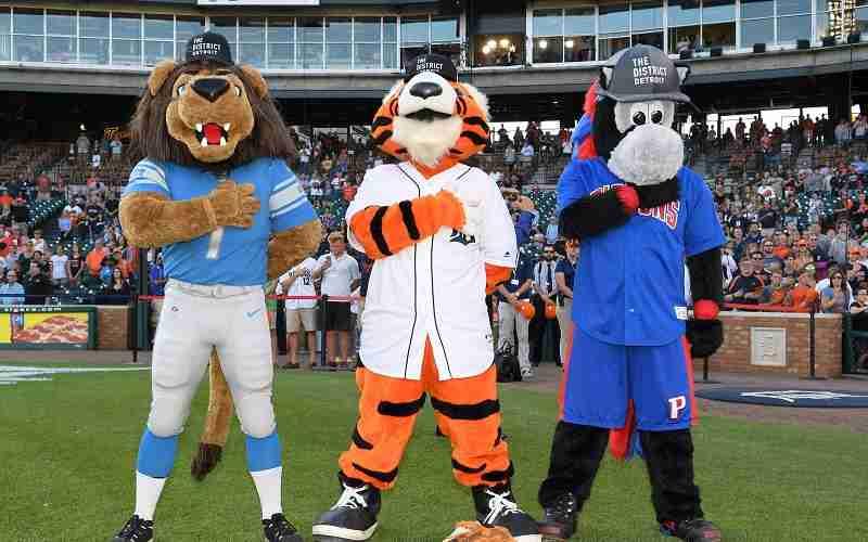 mascots for Detroit Lions Detroit Tigers and Detroit Pistons