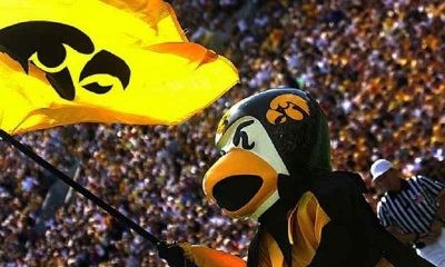 iowa mascot herky the hawk waving a university of iowa flag