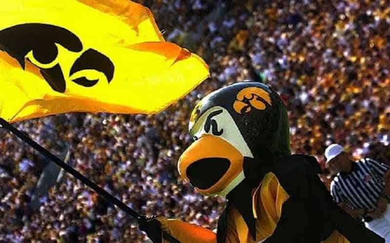iowa mascot herky the hawk waving a university of iowa flag
