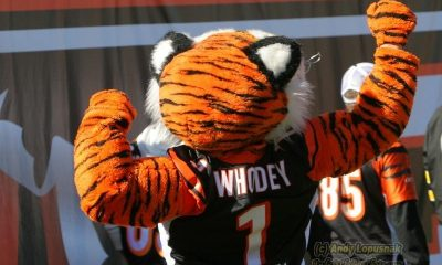 Legal Sports Betting on the NFL in Cincinnati 2021